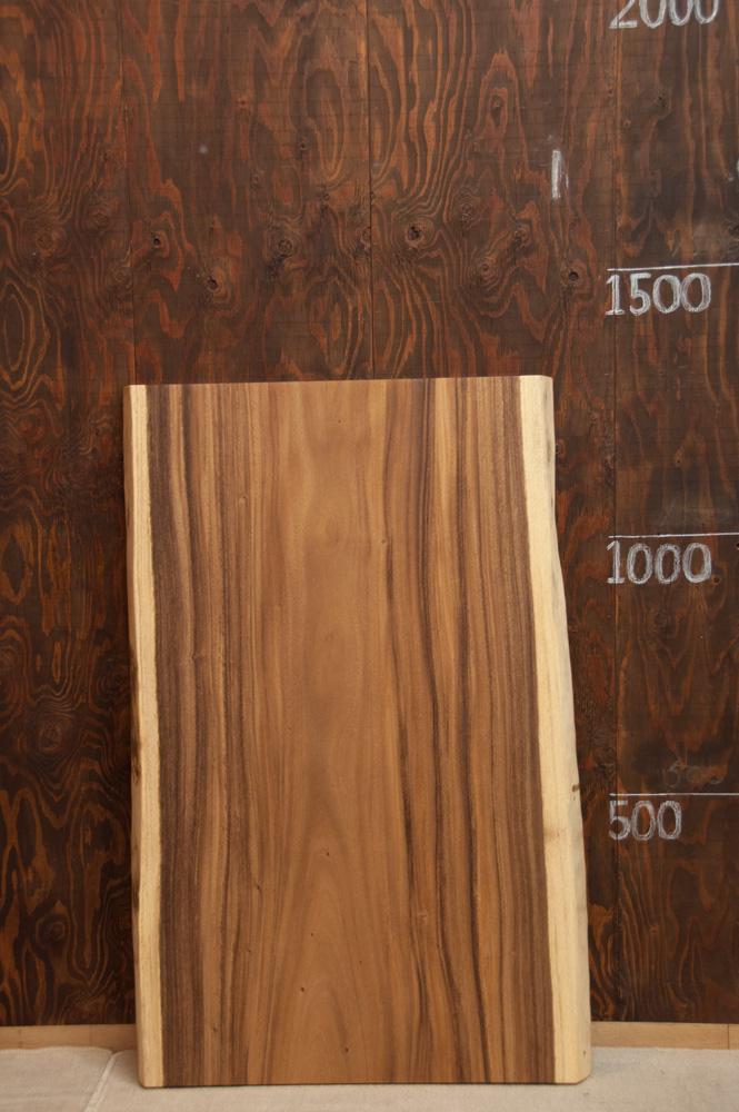 モンキーポッド w1300メイン画像