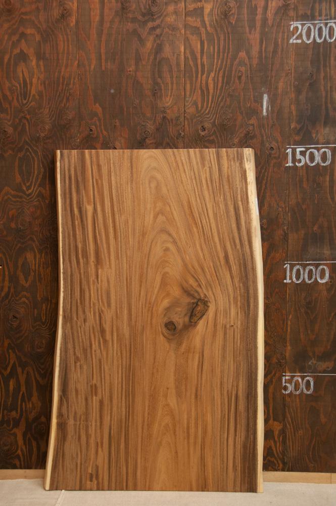 モンキーポッド w1480メイン画像