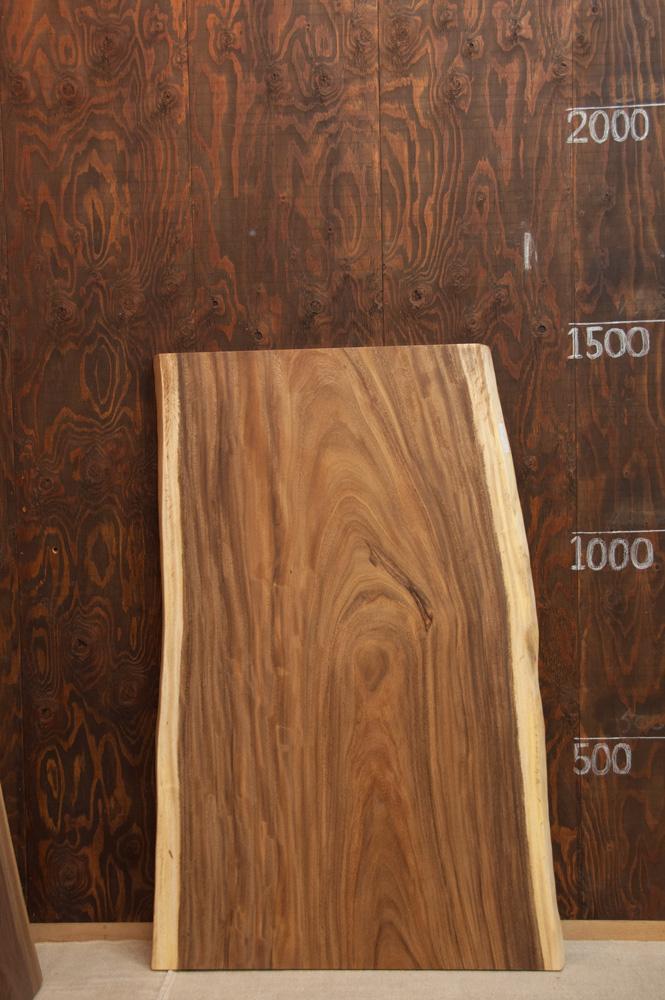 モンキーポッド w1450メイン画像